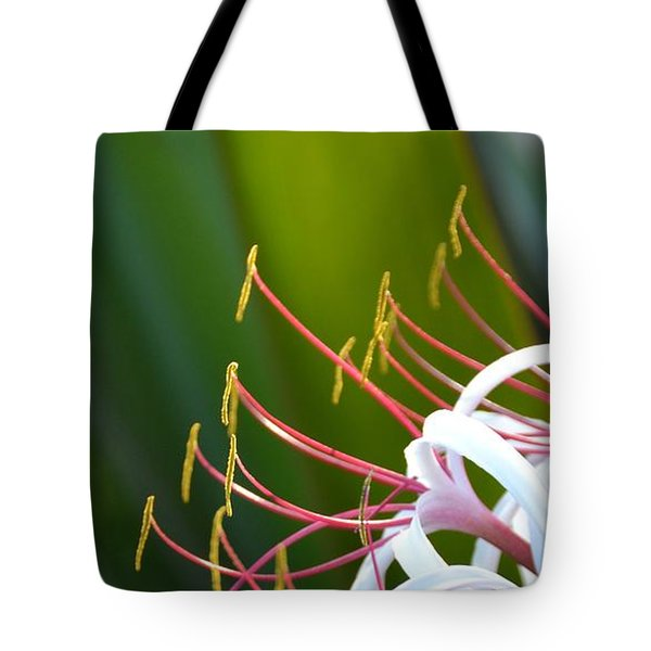 Tote Bag featuring the photograph Crinum Lily by Darla Wood