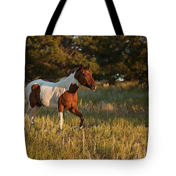 Crispy Tote Bag