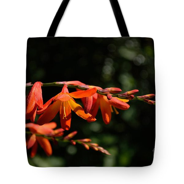 Tote Bag featuring the photograph Crocosmia 'dusky Maiden' Flowers by Scott Lyons