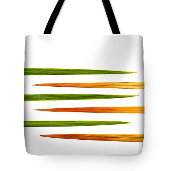 Crocosmia Leaves On White Background Tote Bag by Carol Leigh