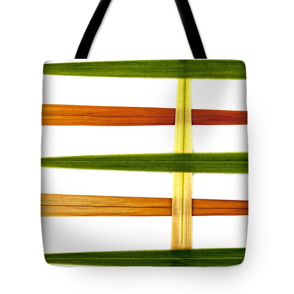 Crocosmia Leaves On White Tote Bag by Carol Leigh