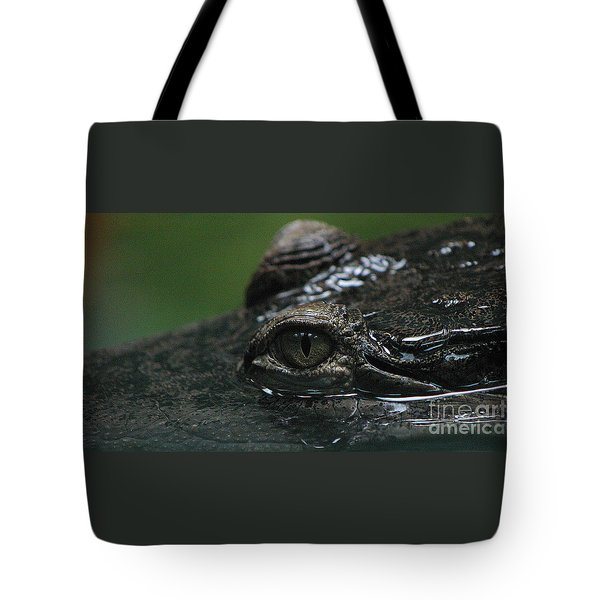 Croc's Eye-1 Tote Bag by Gary Gingrich Galleries