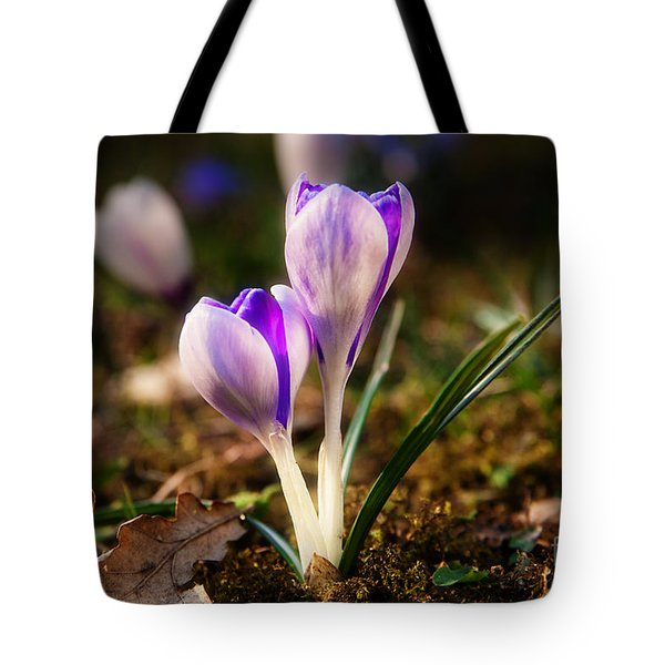 Tote Bag featuring the photograph Crocus by Christine Sponchia