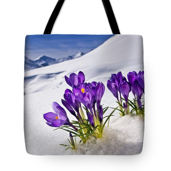 Crocus Flower Peeking Up Through The Tote Bag
