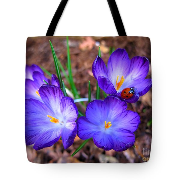Crocus Flowers And Ladybug Tote Bag by Debra Thompson