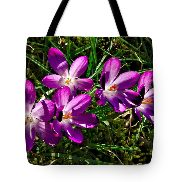Crocus In The Grass Tote Bag