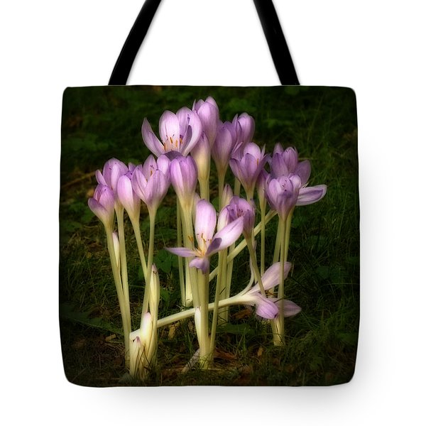 Tote Bag featuring the photograph Crocus by Inge Riis McDonald