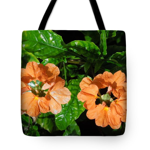 Tote Bag featuring the photograph Crossandra by Ron Davidson