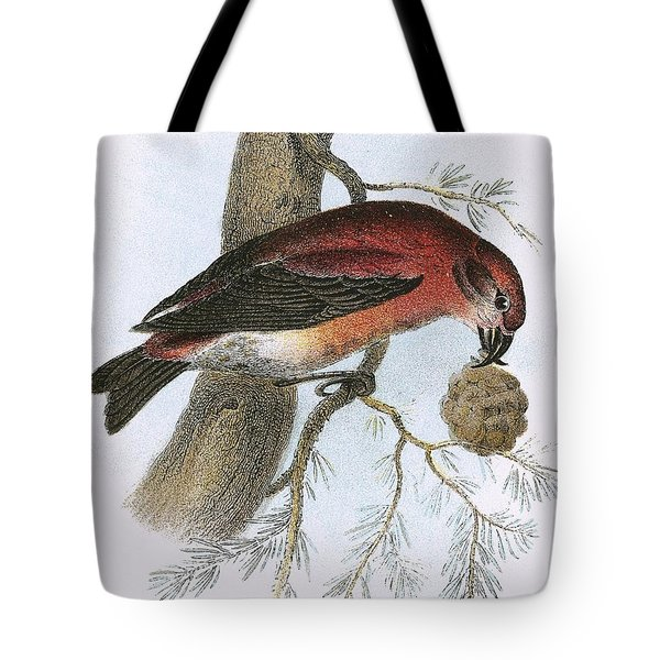 Crossbill Tote Bag by English School