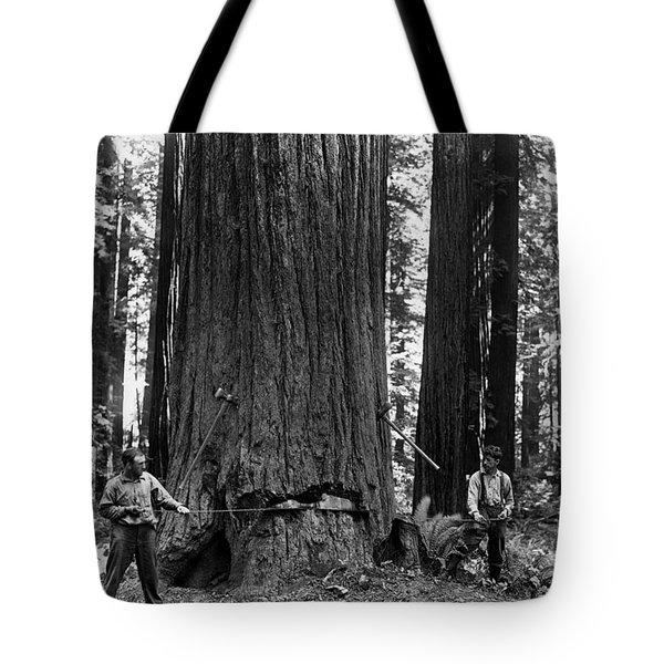 Crosscutting A Redwood C. 1900 Tote Bag