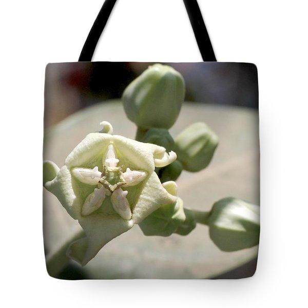 Crown Flower Tote Bag by Ramabhadran Thirupattur