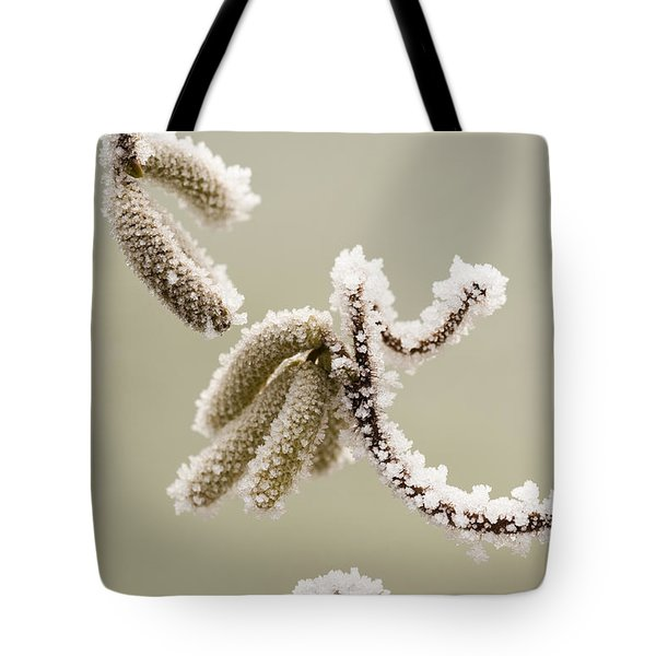 Crunchy Catkins Tote Bag by Anne Gilbert