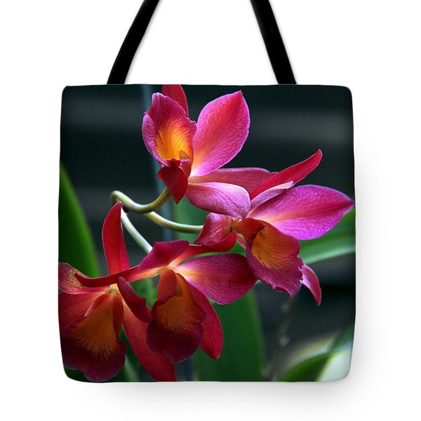 Tote Bag featuring the photograph Ctna New River Orchid by Greg Allore