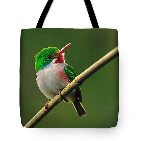 Cuban Tody Tote Bag by Tony Beck