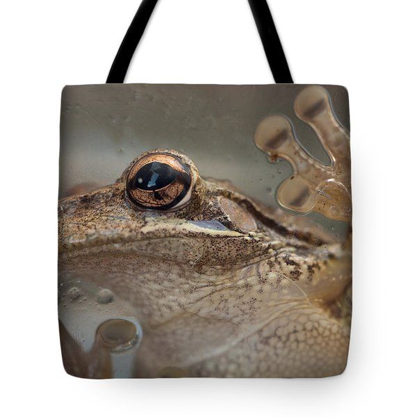 Cuban Treefrog Tote Bag