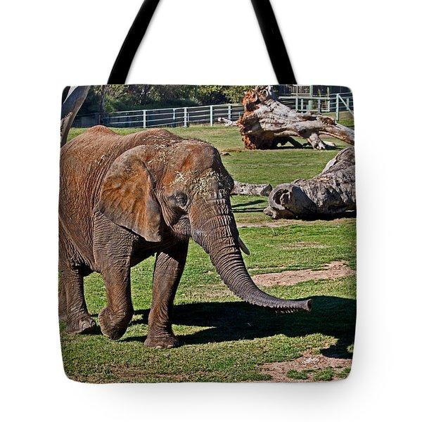 Cuddles Searching For Snacks Tote Bag
