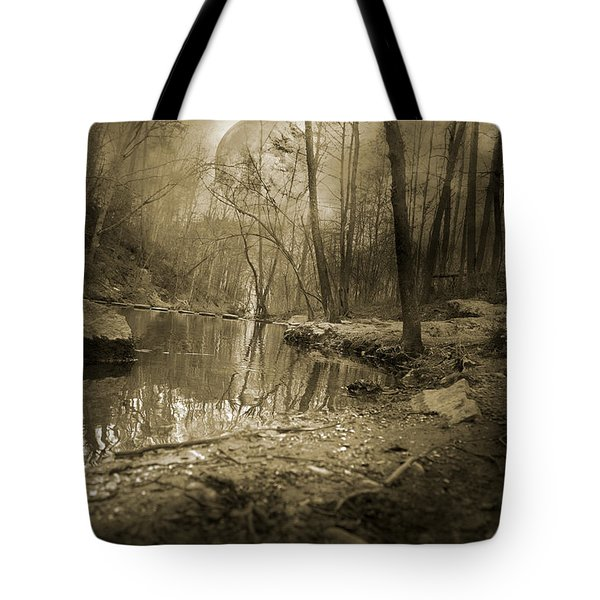 Culmination Tote Bag by Betsy Knapp