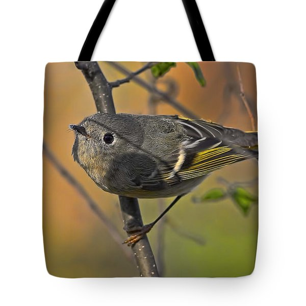 Tote Bag featuring the photograph Curiosity by Gary Holmes