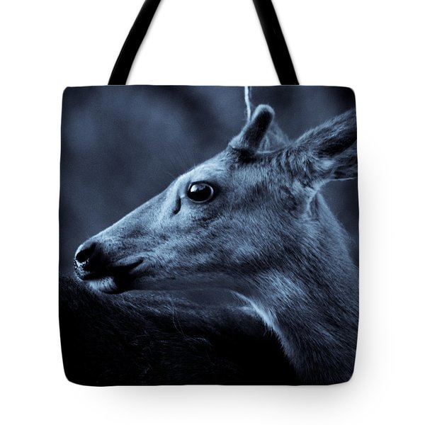 Curious  Tote Bag by Adria Trail
