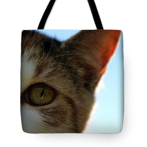 Curious Cat Tote Bag