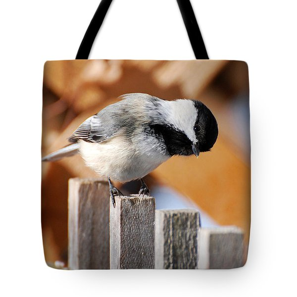 Curious Chickadee Tote Bag by Christina Rollo