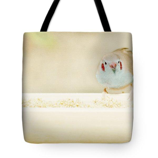 Tote Bag featuring the photograph Curious Cordon Bleu Finch  by Lisa Knechtel