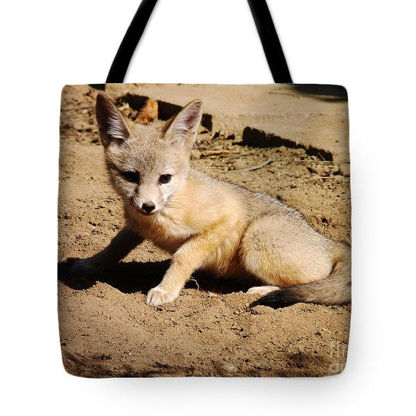 Curious Kit Fox Tote Bag