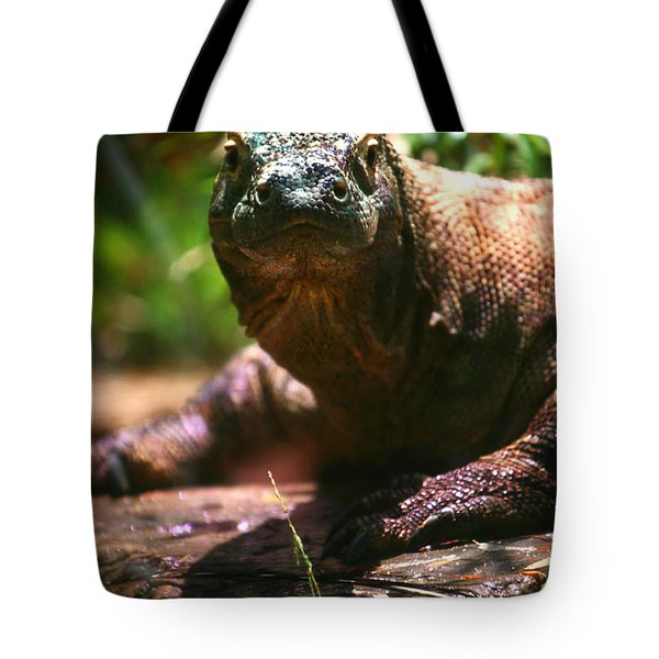 Curious Komodo Tote Bag
