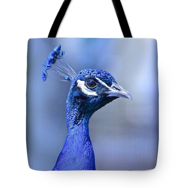 Curious Peacock Tote Bag