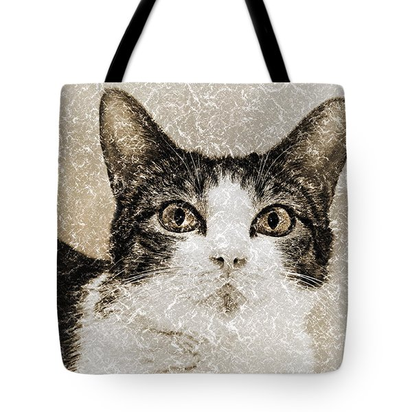 Curious State Of Wonder Tote Bag by Andee Design