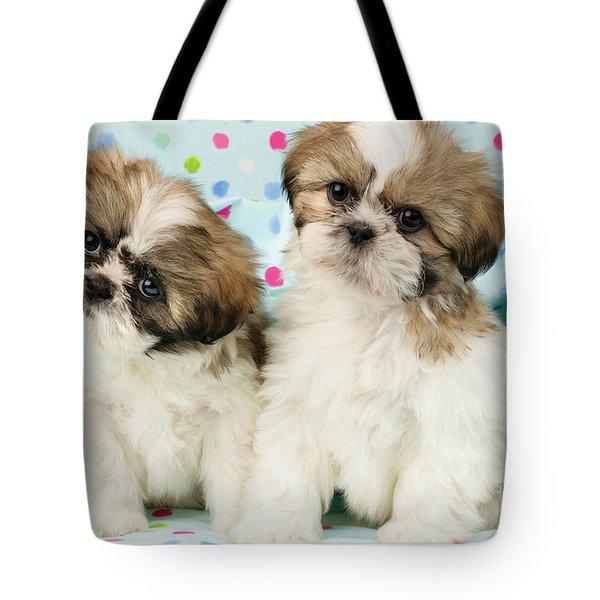Curious Twins Tote Bag by Greg Cuddiford