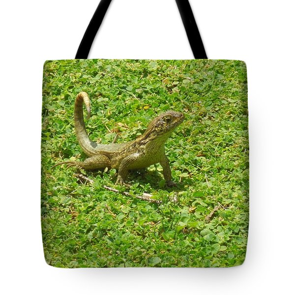 Curly-tailed Lizard Tote Bag by Ron Davidson