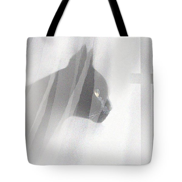Curtain View 2 Tote Bag by Robert Foster