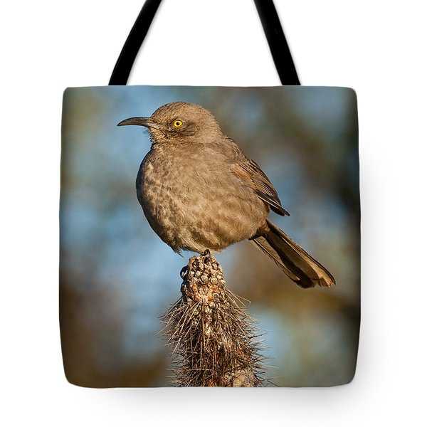 Curve-billed Thrasher On A Cactus Tote Bag