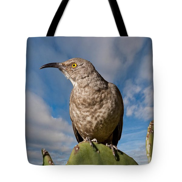 Curve-billed Thrasher On A Prickly Pear Cactus Tote Bag