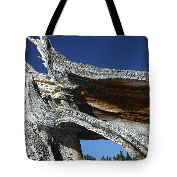 Curves Tote Bag