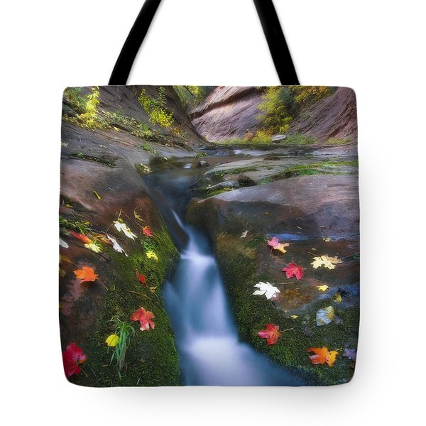 Cut Into Autumn Tote Bag by Peter Coskun