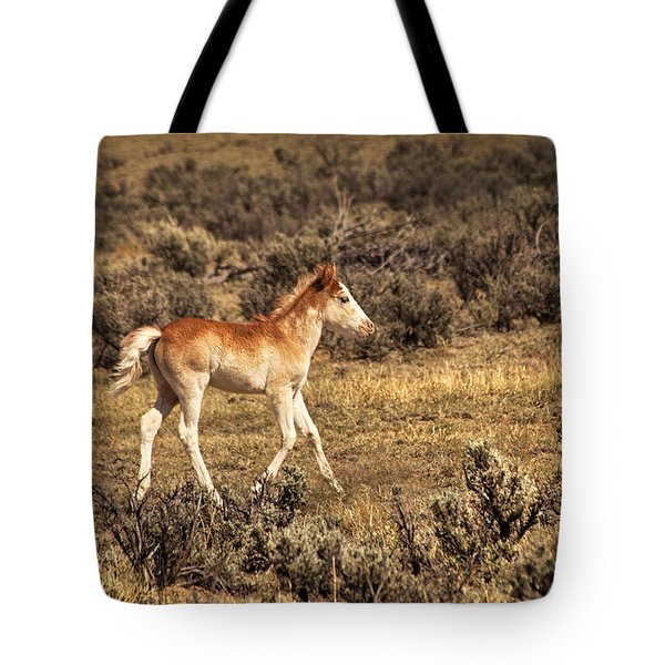 Cute Colt Wild Horse On Navajo Indian Reservation  Tote Bag by Jerry Cowart