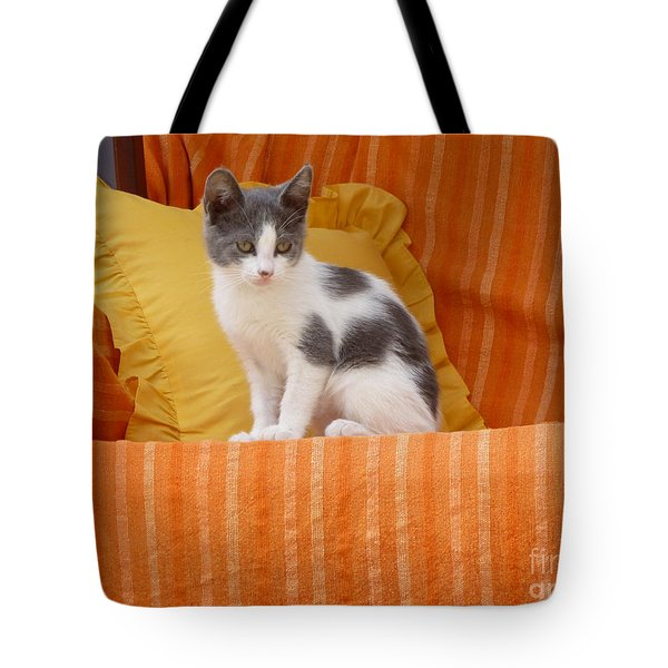 Tote Bag featuring the photograph Cute Kitty by Vicki Spindler