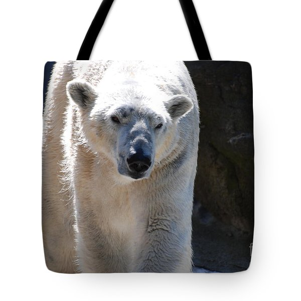 Cute Polar Bear  Tote Bag by DejaVu Designs
