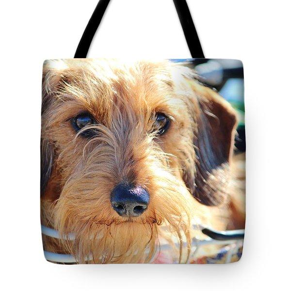 Cute Puppy Tote Bag by Cynthia Guinn