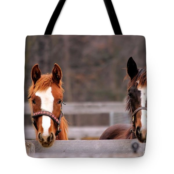 Cute Yearlings Tote Bag
