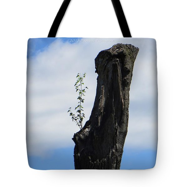 Cycle Of Life Tote Bag by Sonali Gangane