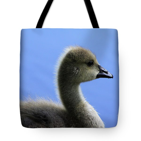 Tote Bag featuring the photograph Cygnet by Alyce Taylor