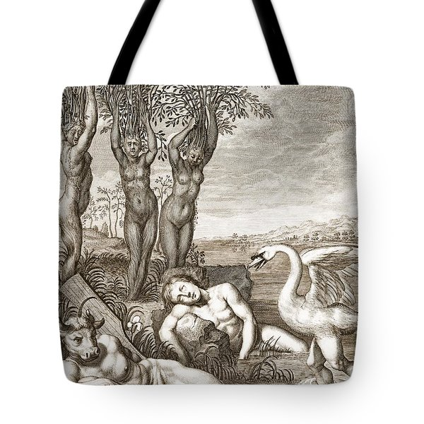 Cygnus Transformed Into A Swan Tote Bag