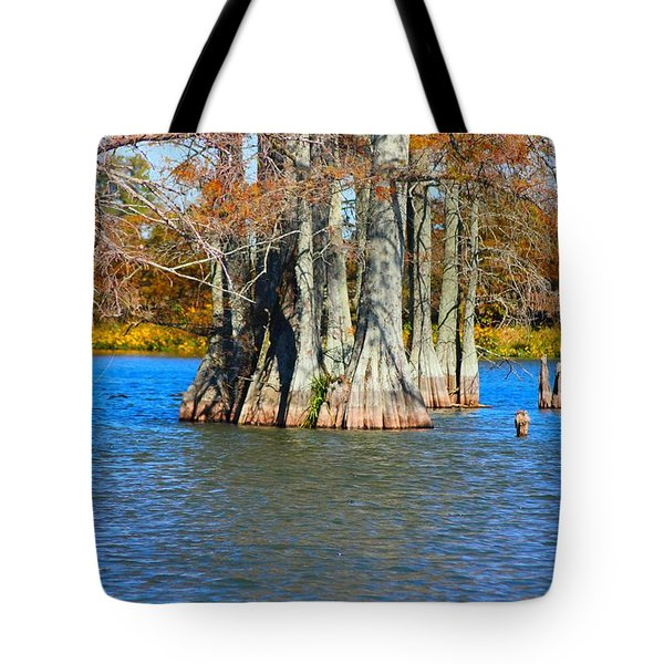 Cypress Birdhouse  Tote Bag