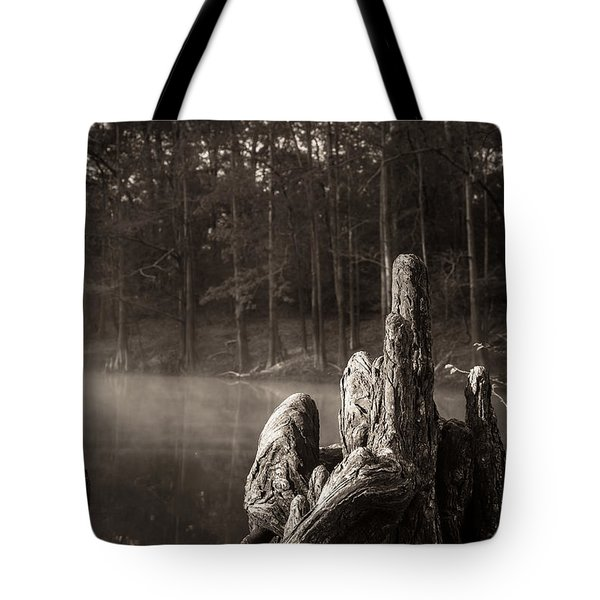 Cypress Knees In Sepia Tote Bag
