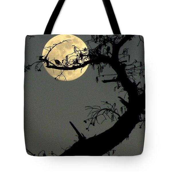 Cypress Moon Tote Bag by Joe Jake Pratt