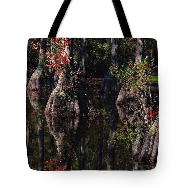 Cypress Reflections Tote Bag by Laura Ragland