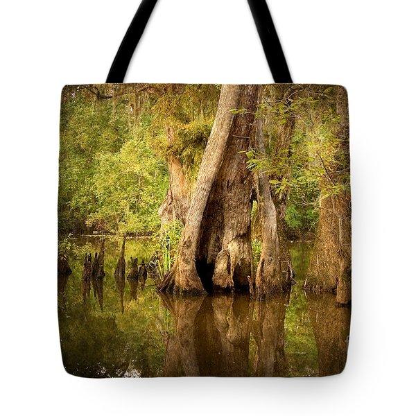 Cypress  Tote Bag by Scott Pellegrin